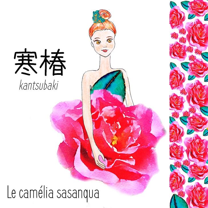 Kantsubaki (Fleur Japonaise) : Le camélia sasanqua