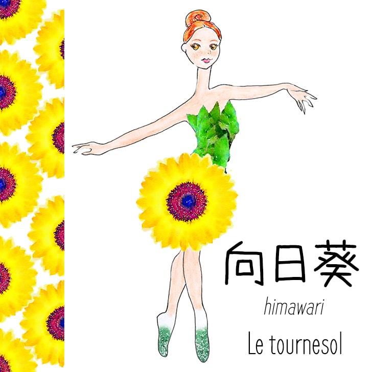 Himawari (Fleur Japonaise) : Le tournesol