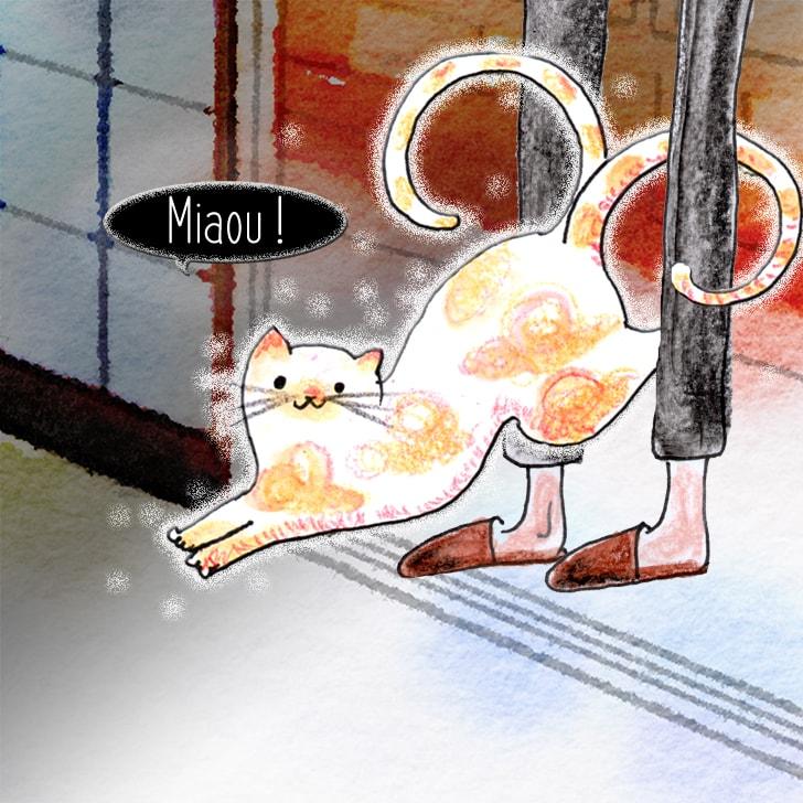 Un chat entre dans la chambre en se faufilant à toute vitesse