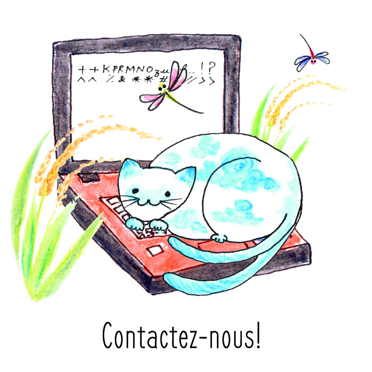 Chat assis sur l'ordinateur