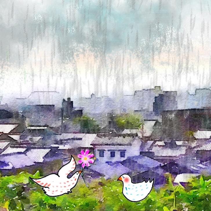 Vue sur les toits de la ville sous la pluie